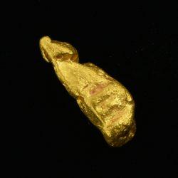 Pepita de oro – 2.311 g