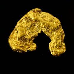 Pepita de oro – 5.35 g